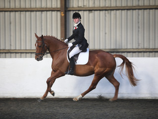 Area Winter Dressage Qualifiers this weekend.  Our team of riders are: