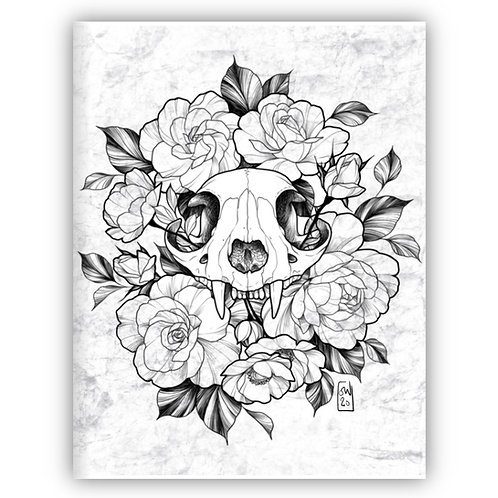 Cat Skull II Print - by Saga