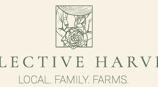 Fresh Veggies from Collective Harvest