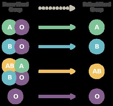 bloodgroup.png