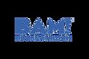 Copy of Copy of logo-bam.png