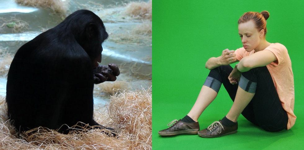Simpanssi - Print