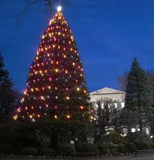 クリスマスのイルミネーションがきれいな大学