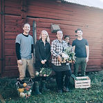 Les agriculteurs Havrvesting légumes bio