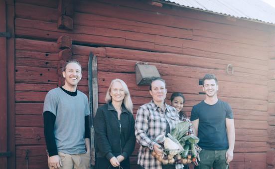 Farmer Havrvesting Bio-Gemüse