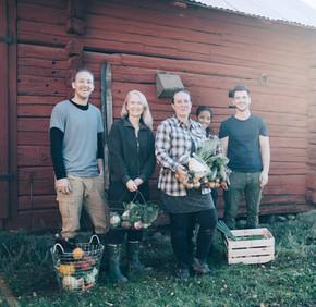 Boeren Havrvesting Organische Groenten