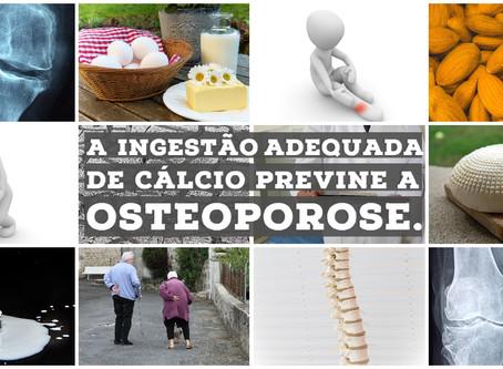 A ingestão adequada de cálcio previne a osteoporose.