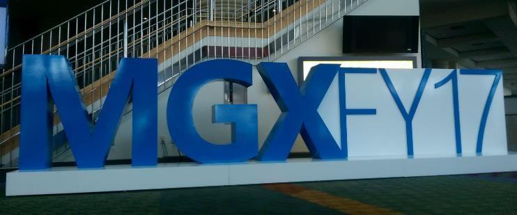 MGX17
