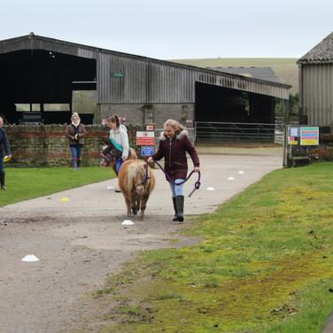 Shetland Agility Course