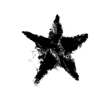 Describe 'Radical' In the form of a star