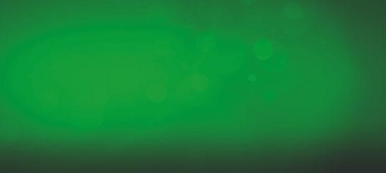 Green Wallpaper.jpg