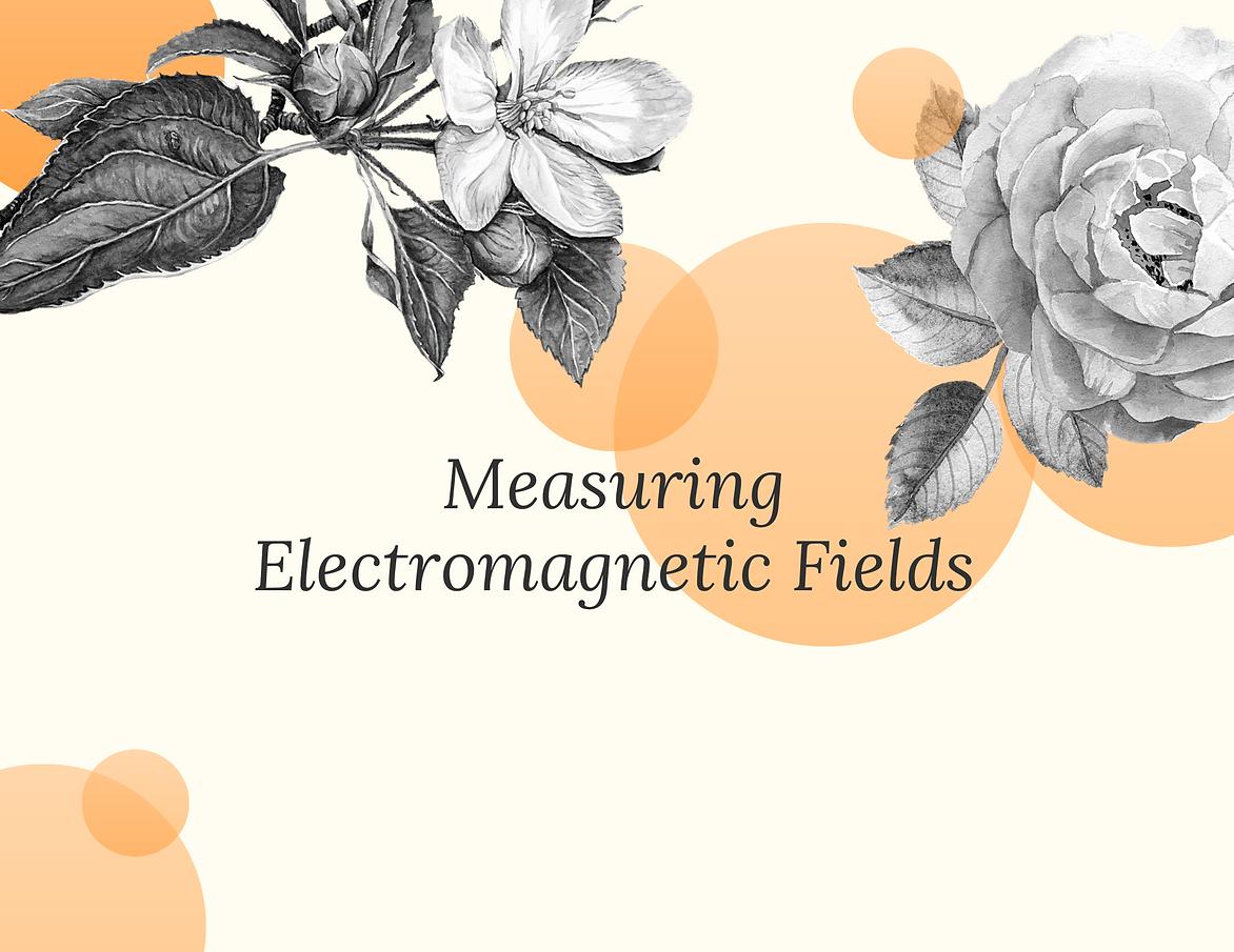 Measuring EMFs.png