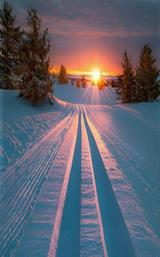 Winter Scene.PNG