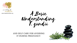 Understanding T. gondii and Self Care fo