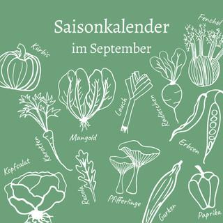 Saisonkalender im September
