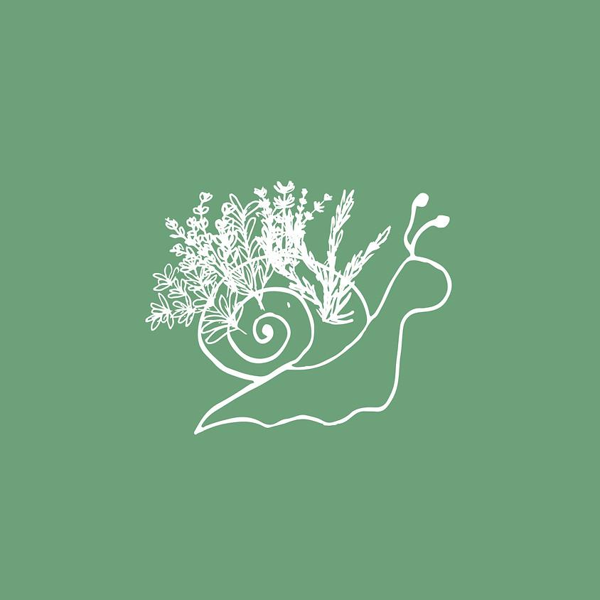 Gartentreff Kräuterspirale bepflanzen