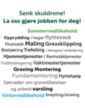 Skjermbilde 2019-03-22 kl. 08.49.36.png