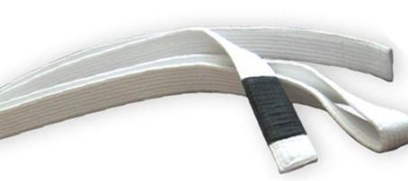 The Ten White Belt Commandments