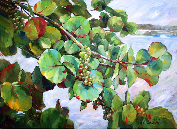 Sea Grapes on the Beach