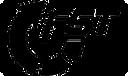 logo FST golf