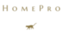 logo-transparent HomePro.png