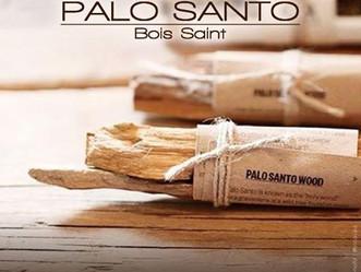 Qu'est-ce que le PALO SANTO ?