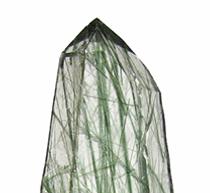 quartz actinolite.png