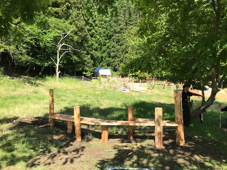 間伐した木材を使ってベンチを作りました。