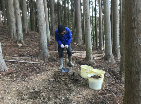穴を掘って日干しレンガを生成する