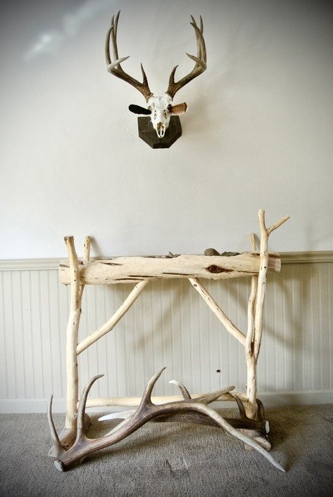 Cedar Display Stand & White Tail Mount