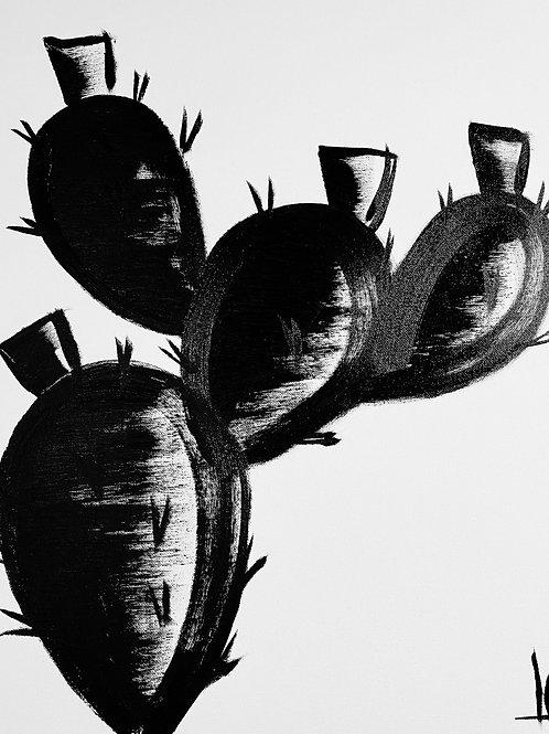 Cactus 13