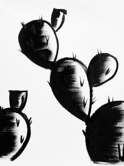 Cactus 09