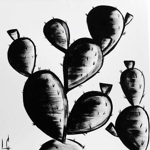 Cactus 05