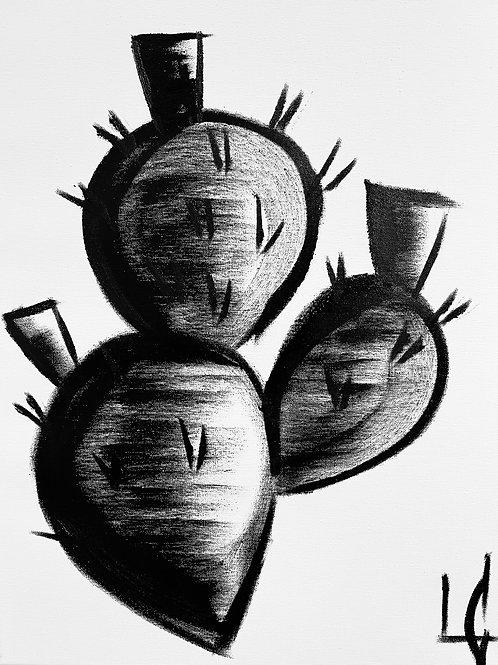 Cactus 19