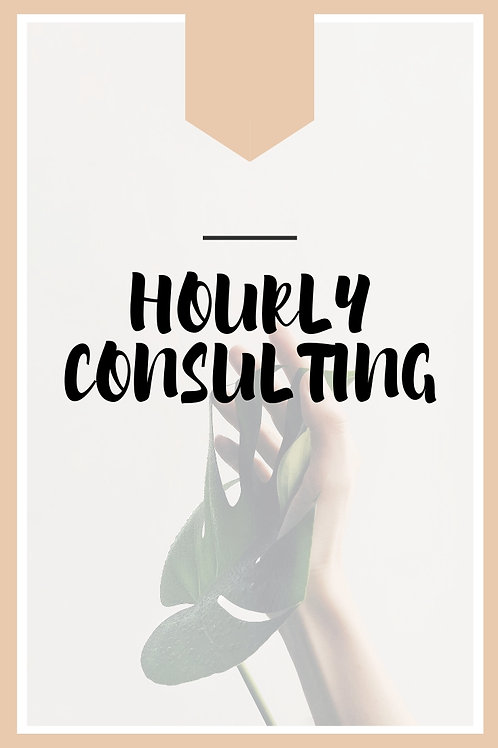 Hourly Consulting