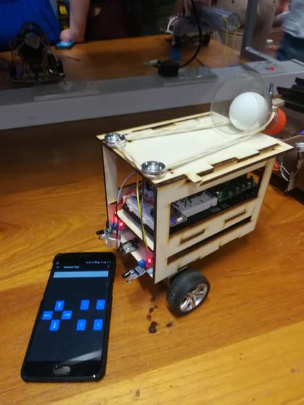 Sensing Robot