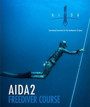 Poster%2520AIDA%2520Materials_preview_ed