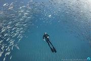 FreedivingCaboPulmo-6143.jpg