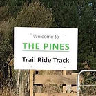 The Pines Track.jpg