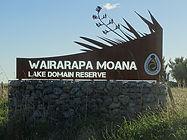 Lake Wairarapa Domain.JPG