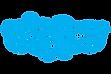 Skype-Logo.0.webp