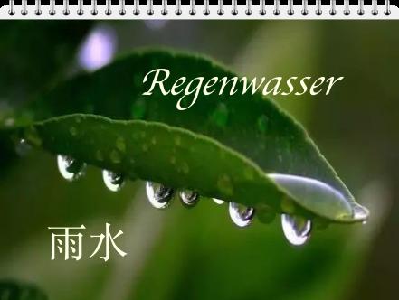 Regenwasser (yǔ shuǐ 雨水)