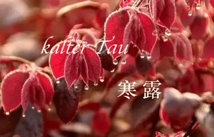 Kalter Tau (han lu 寒露)