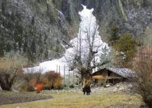 Erde im Winter