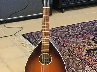 Levin mandolin 1895:-