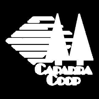 logo_blanco_nofondo-03.png