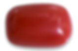 bamboo red coral gemstone.PNG