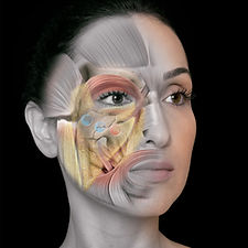 Livro Rejuv Facial_CAPA_fechada_ALTA.jpg