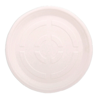 12 inch plate_edited_edited_edited.png