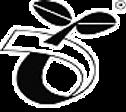 SeedlingEco_2_edited_edited.png